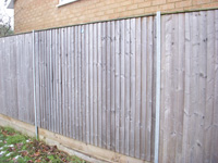 Close board panels with galvanised steel posts